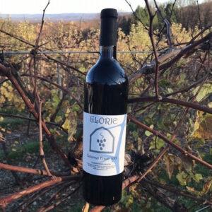 bottle of Cab Franc in vines