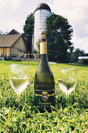 bottom of wine and two glasses on lawn with barn in background