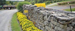 Rock wall at Glorie Farm