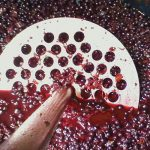Mashing currants in a fermenting tank