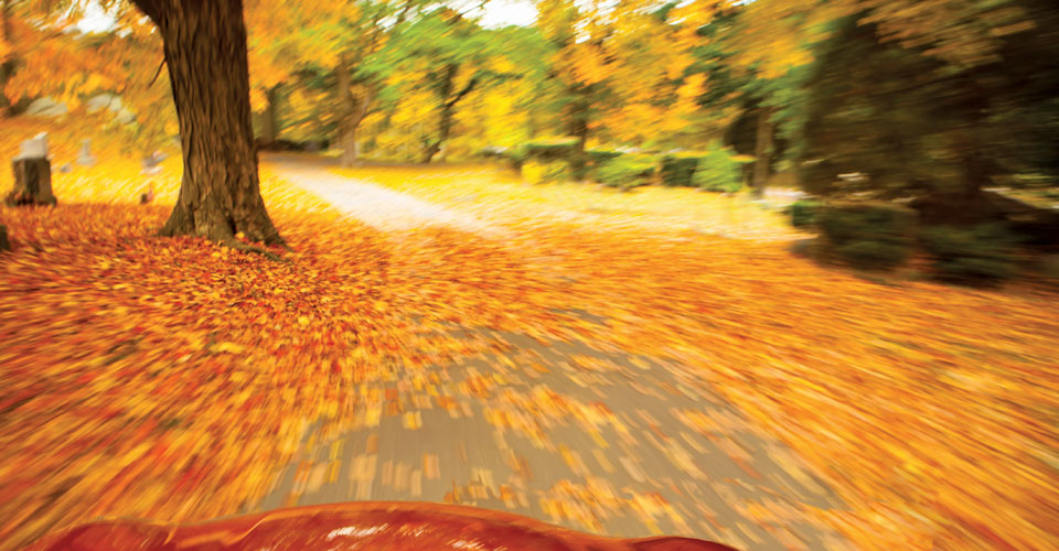 partial view of red car, driving with motion blur on a road with red and yellow fall foliage.