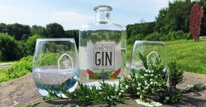 Bottle of Glorie Farm Gin with two glasses and juniper berries outdoors on a rock.