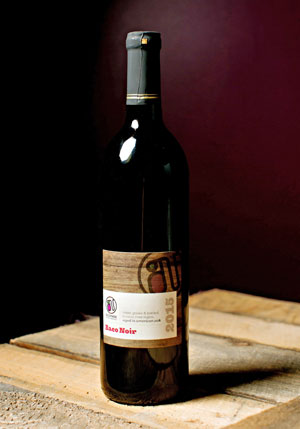 Bottle of Nostrano Baco Noir wine on wood table.