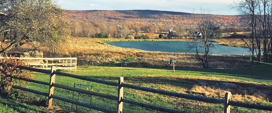 View of Applewood property in the afternoon, with fall foliage and colors.