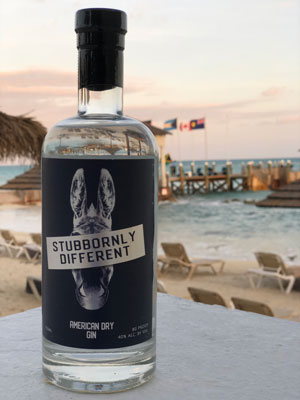 bottle of Stubbornly Different American Dry Gin, from Taconic Distillery, with beach scene in background.
