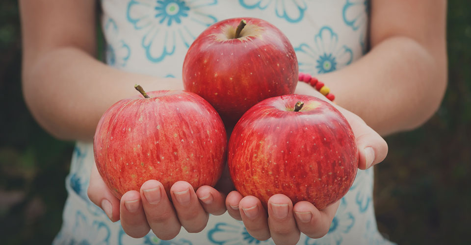 closeup of girl's hands holding three red apples