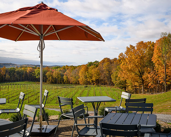 View from Milea pation overlooking vineyard and fall foliage