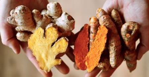 hands holding ginger and tumeric roots