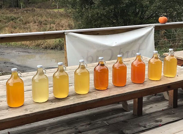 jugs of different colored cider on a wooden table