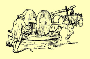 etching of apple pressing with horse
